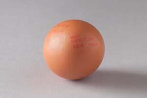 نمونه چاپ بر روی تخم مرغ